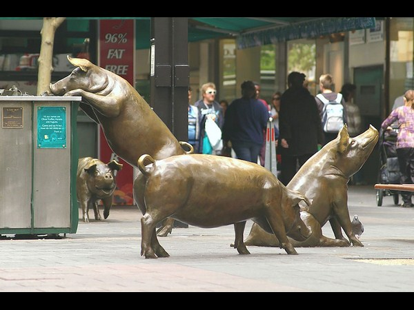 Rundle Mall Pigs (Adelaide, Australia)