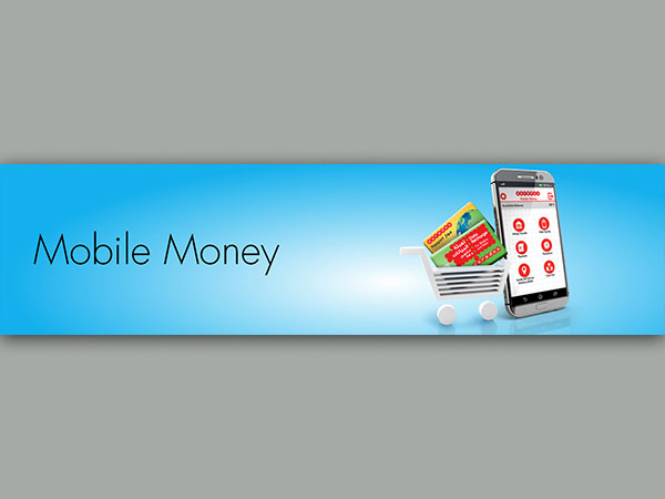 Mobile Money App