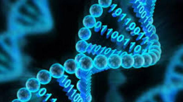 ఒక గ్రాము DNAలో 1000జీబిల డేటా స్టోరేజ్ సాధ్యమే!
